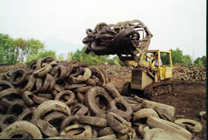 Waste Tires Image